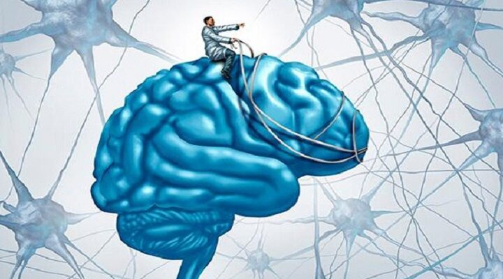 Как сознание управляет мозгом?